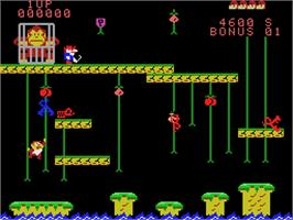 In game image of Donkey Kong Junior on the Coleco Vision.
