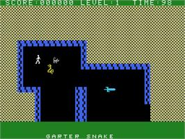 In game image of Gateway to Apshai on the Coleco Vision.