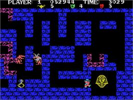 In game image of Tutankham on the Coleco Vision.