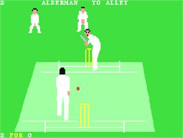 In game image of Allan Border's Cricket on the Commodore 64.