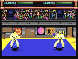 In game image of Budokan: The Martial Spirit on the Commodore 64.