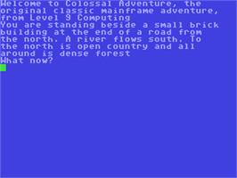 In game image of Colossal Adventure on the Commodore 64.