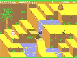 In game image of Congo Bongo on the Commodore 64.