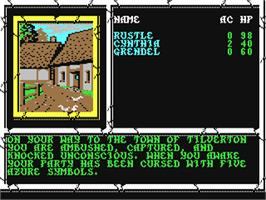 In game image of Curse of the Azure Bonds on the Commodore 64.