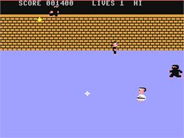 In game image of Enter the Ninja on the Commodore 64.