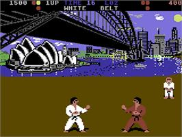 In game image of International Karate on the Commodore 64.