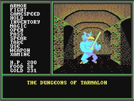 In game image of Legacy of the Ancients on the Commodore 64.