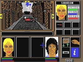 In game image of Lords of Doom on the Commodore 64.