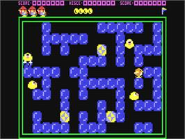 In game image of Pengo on the Commodore 64.