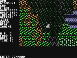In game image of Questron on the Commodore 64.