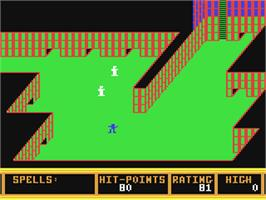 In game image of Realm of Impossibility on the Commodore 64.