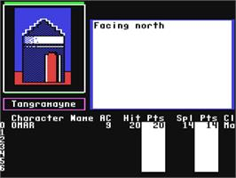 In game image of The Bard's Tale II: The Destiny Knight on the Commodore 64.