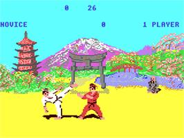 In game image of The Way of the Exploding Fist on the Commodore 64.