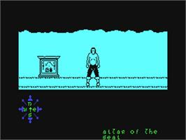 In game image of Tir Na Nog on the Commodore 64.