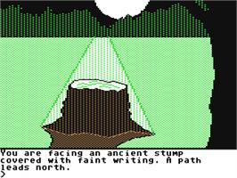 In game image of Transylvania on the Commodore 64.