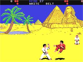 In game image of World Karate Championship on the Commodore 64.