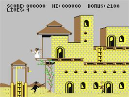 In game image of Zorro on the Commodore 64.