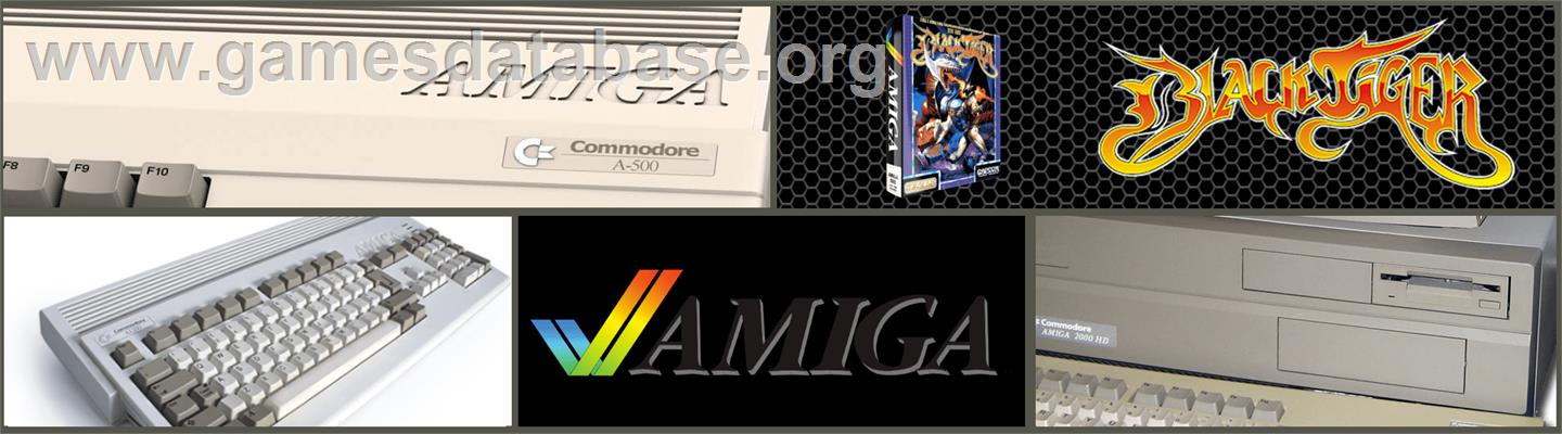 Black Tiger - Commodore Amiga - Artwork - Marquee