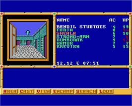 In game image of Gateway to the Savage Frontier on the Commodore Amiga.