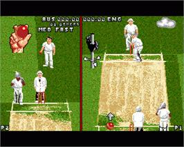 In game image of Ian Botham's Cricket on the Commodore Amiga.