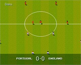 In game image of Sensible World of Soccer on the Commodore Amiga.