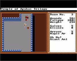 In game image of Temple of Apshai Trilogy on the Commodore Amiga.