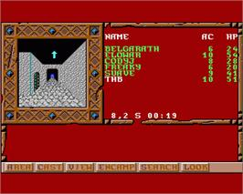 In game image of Treasures of the Savage Frontier on the Commodore Amiga.