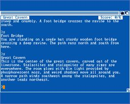 In game image of Zork II: The Wizard of Frobozz on the Commodore Amiga.