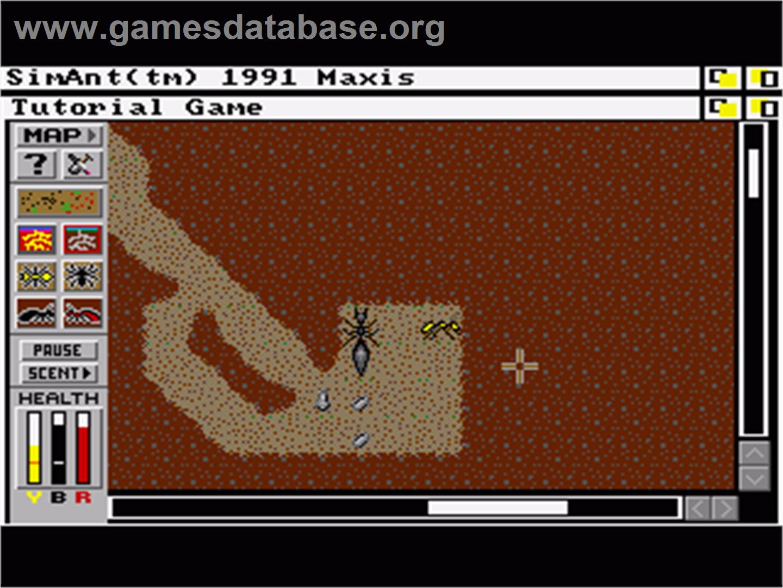 Sim Ant: The Electronic Ant Colony - Commodore Amiga