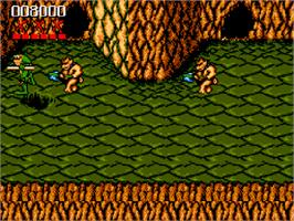 In game image of Battle Toads on the Commodore Amiga CD32.