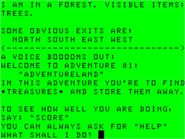 In game image of Adventure Land on the Dragon 32-64.