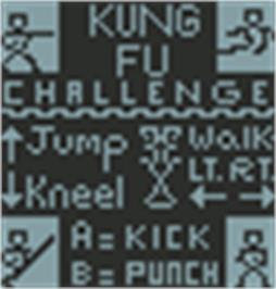 Title screen of Kung Fu Challenge on the Hartung Game Master.