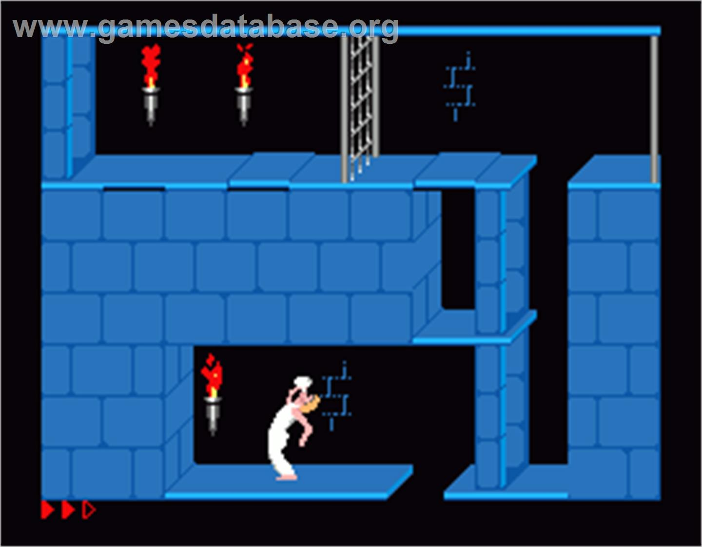 Prince of Persia - MGT Sam Coupe - Artwork - In Game