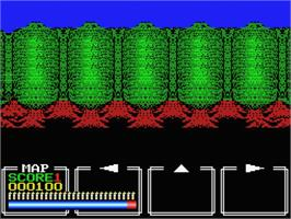 In game image of Dungeon Hunter on the MSX.