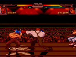 In game image of World Warrior Tournament 2 on the MUGEN.
