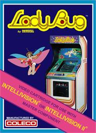 Box cover for Lady Bug on the Mattel Intellivision.