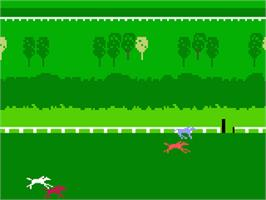 In game image of Horse Racing on the Mattel Intellivision.