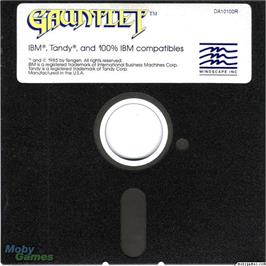 Artwork on the Disc for Gauntlet on the Microsoft DOS.