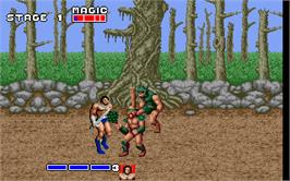 In game image of Golden Axe on the Microsoft DOS.