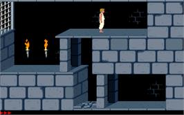 In game image of Prince of Persia on the Microsoft DOS.