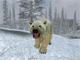 In game image of Cabela's Big Game Hunter 2005 Adventures on the Microsoft Xbox.
