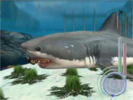 In game image of Jaws: Unleashed on the Microsoft Xbox.