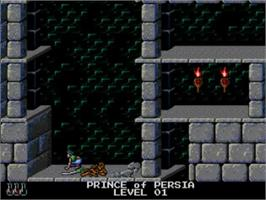 In game image of Prince of Persia on the NEC TurboGrafx CD.