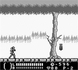 In game image of Castlevania: Legends on the Nintendo Game Boy.