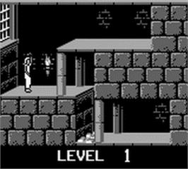 In game image of Prince of Persia on the Nintendo Game Boy.