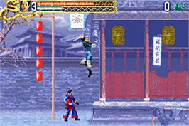 In game image of Crouching Tiger, Hidden Dragon on the Nintendo Game Boy Advance.