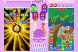 In game image of Puyo Pop Fever on the Nintendo Game Boy Advance.