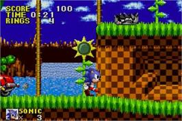 In game image of Sonic The Hedgehog on the Nintendo Game Boy Advance.