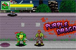 In game image of Teenage Mutant Ninja Turtles on the Nintendo Game Boy Advance.