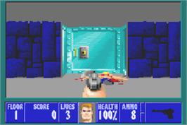 In game image of Wolfenstein 3D on the Nintendo Game Boy Advance.